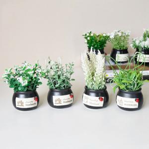 Mini Plant Artificial Plants Decoration Plastic Flowers Arrangements For  Home Table   Morimiss.com